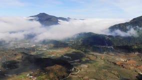 Mooie Panorama Hoogste mening van het kweken van gouden padiepadieveld in het lokale dorp van Tavan met fansipan berg en bewolkt stock videobeelden