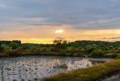 Mooie panoramamening van zonsondergangachtergrond in het platteland van Thailand Royalty-vrije Stock Afbeelding