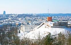 Mooie panormaic mening van Vilnius stock fotografie