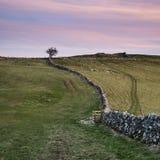 Mooie pastelkleurzonsondergang over Piekdistrictslandschap in het UK Royalty-vrije Stock Fotografie