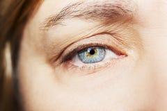Mooie pienter kijkt vrouwen` s oog Sluit omhoog geschoten Stock Afbeeldingen