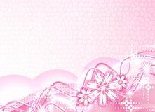 Mooie pink Royalty-vrije Stock Afbeelding