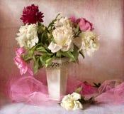 Mooie pioenen Royalty-vrije Stock Afbeelding