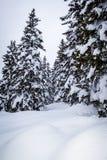 Mooie plaats in de Alpen royalty-vrije stock afbeeldingen