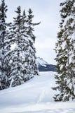 Mooie plaats in de Alpen royalty-vrije stock fotografie