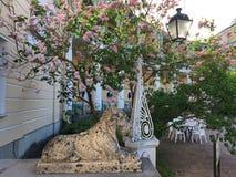 Mooie plaats in het Pavlovsk Park Stock Afbeeldingen