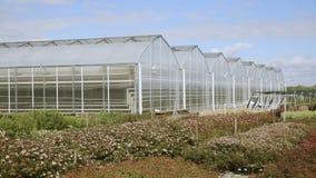 Mooie plastic die serres en groenten met veggie tuin worden geplant stock video