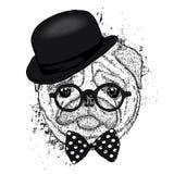 Mooie pug hoed en met een band Grappige Hond Puppy Vectorillustratie voor een prentbriefkaar of een affiche Royalty-vrije Stock Foto