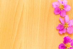 Mooie purpere bloemen die op de houten achtergrond bloeien Royalty-vrije Stock Afbeelding
