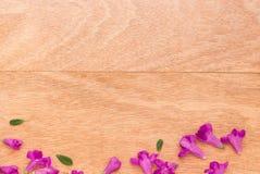 Mooie purpere bloemen op de houten achtergrond Stock Afbeeldingen