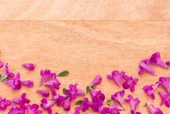 Mooie purpere bloemen op de houten achtergrond Stock Afbeelding