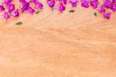 Mooie purpere bloemen op de houten achtergrond Stock Fotografie