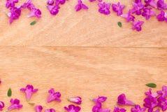 Mooie purpere bloemen op de houten achtergrond Royalty-vrije Stock Fotografie