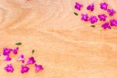Mooie purpere bloemen op de houten achtergrond Stock Foto's