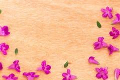 Mooie purpere bloemen op de houten achtergrond Royalty-vrije Stock Afbeelding