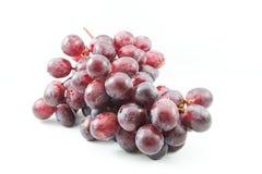 Mooie purpere druiven Royalty-vrije Stock Foto's