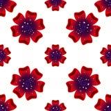 Mooie rad-bloem Naadloos BloemenPatroon Vector Stock Afbeeldingen