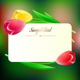 Mooie rechthoekige greating kaart met de lentebloemen Stock Afbeelding