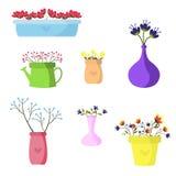 Mooie reeks bloemen in gekleurde vazen Stock Afbeeldingen