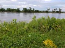 Mooie rivier stock foto