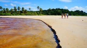 Mooie rivier bij Trancoso-strand met palmen, dichtbij Porto Seguro, Bahia, Brazili? royalty-vrije stock afbeeldingen
