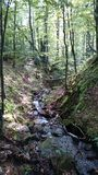 Mooie rivier in Karpatian Stock Foto