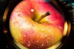 Mooie rode appel in de verhoging royalty-vrije stock foto's
