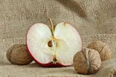 Mooie rode appel met noten op canvaszak Stock Foto's