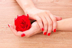 Mooie rode manicure en bloem Stock Fotografie