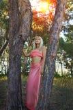 Mooie romantische vrouw bij feebos Stock Afbeeldingen