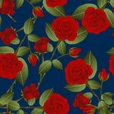 Mooie Rood nam - Rosa op Indigo Blauwe Achtergrond toe De dag van de valentijnskaart royalty-vrije illustratie