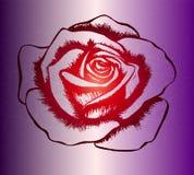 Mooie rood nam zegel op de achtergrond van de kleurengradiënt toe Royalty-vrije Stock Fotografie