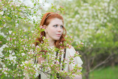 Mooie roodharige meisjesgangen in appelboomgaard Royalty-vrije Stock Foto's