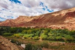 Mooie Rose Valley - Vallee des Roses, dichtbij Ouarzazate, Marokko royalty-vrije stock afbeelding