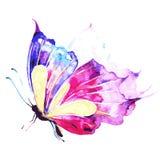 Mooie roze blauwe die vlinder, op een wit wordt geïsoleerd Stock Foto