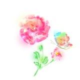Mooie roze bloemen, waterverf, op een wit Royalty-vrije Stock Foto's