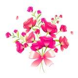 Mooie roze die bloemen, waterverf, op een wit wordt geïsoleerd Royalty-vrije Stock Foto