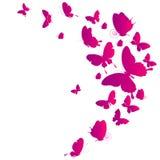 Mooie roze die vlinders, op een wit worden geïsoleerd Stock Fotografie