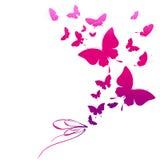 Mooie roze die vlinders, op een wit worden geïsoleerd Royalty-vrije Stock Afbeelding