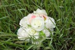 Mooie roze en witte rozen Stock Afbeeldingen