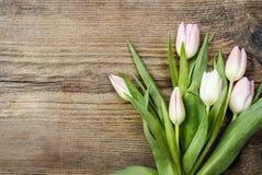 Mooie roze en witte tulpen op houten achtergrond Stock Afbeelding