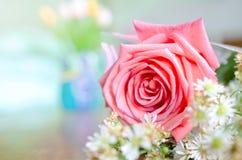 Mooie roze nam toe Royalty-vrije Stock Fotografie