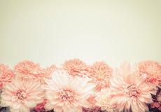Mooie roze pastelkleurbloemen op beige achtergrond, bovenkant, grens Mooie groetkaart of uitnodiging voor huwelijk, Moedersdag stock foto