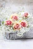 Mooie roze rozen en Gypsophila (baby-Adem bloemen) Stock Afbeeldingen