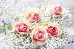 Mooie roze rozen en Gypsophila (baby-Adem bloemen) Stock Afbeelding