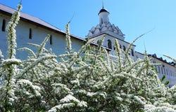 Mooie Russische Kerk Pasen, de lente ergens in het hart van Rusland stock foto