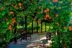 Mooie rust, bloemen ineengestrengelde pavillion stock afbeelding
