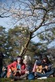 Mooie Sakura in Canada Royalty-vrije Stock Afbeelding