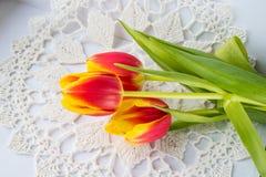 Mooie samenstelling met de kleuren van de tulpen, op een witte achtergrond royalty-vrije stock foto's
