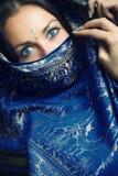 Mooie Sari Royalty-vrije Stock Foto's